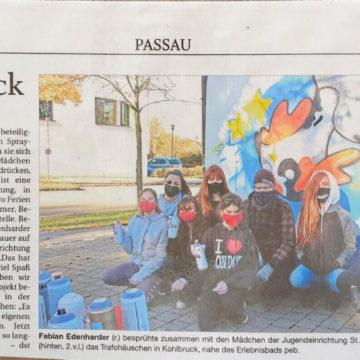 Passau-Stromhaeuschen-Graffiti